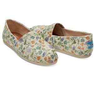 Toms Shoes - Toms California Wildflower Print